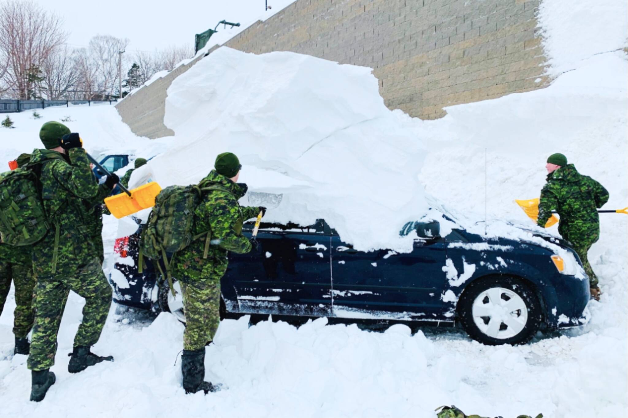 newfoundland canadian armed forces