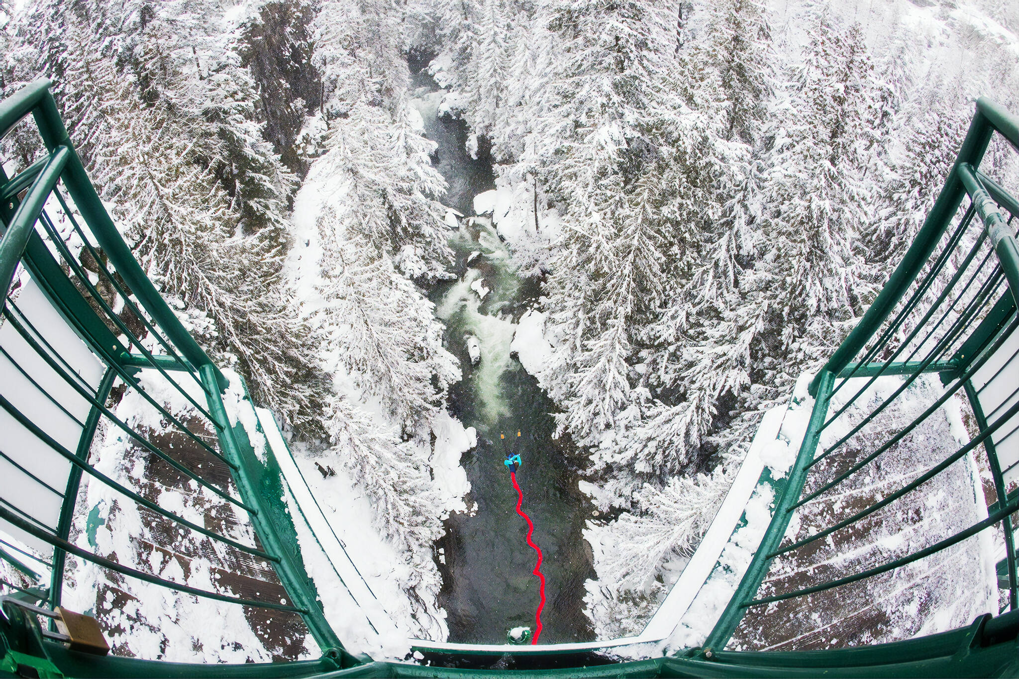 bungee whistler
