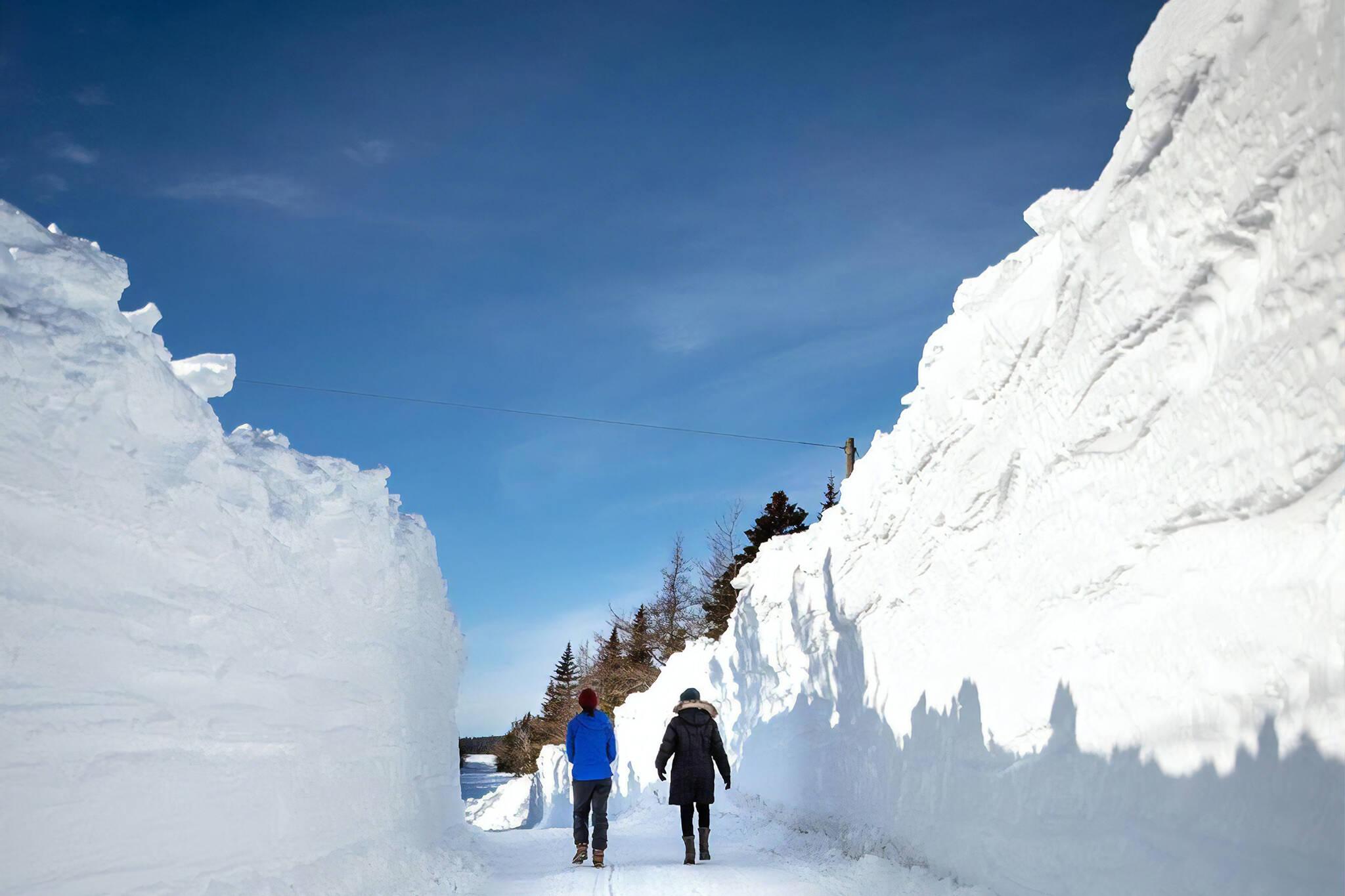 newfoundland snow