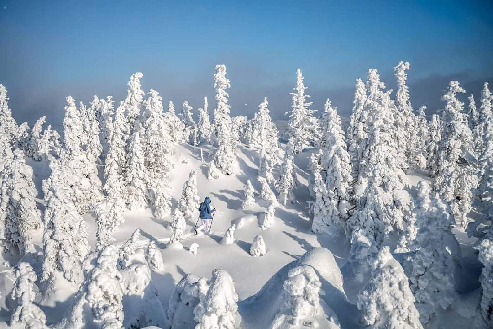 Vallée des Fantômes Mont Valin