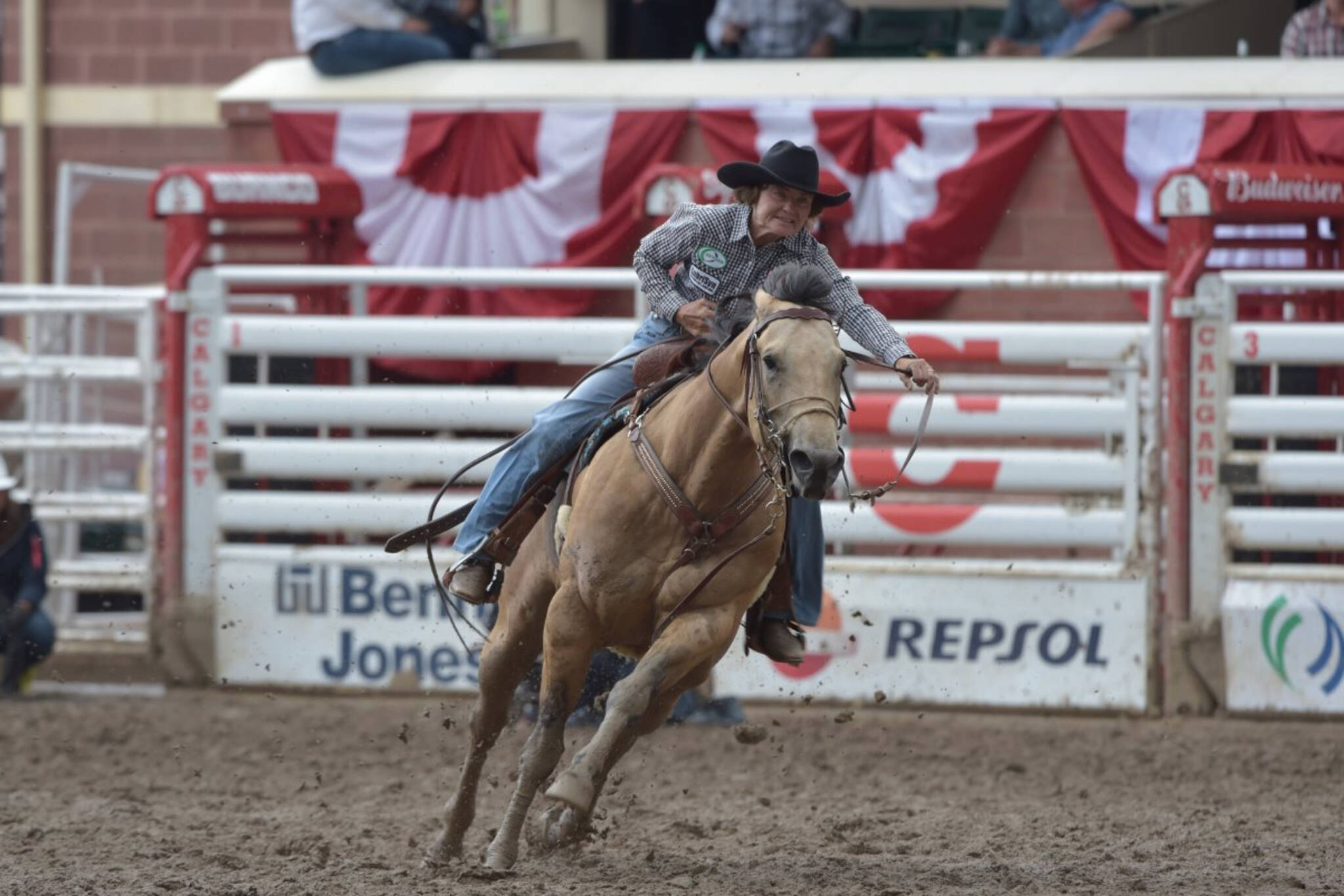 calgary stampede cancelled