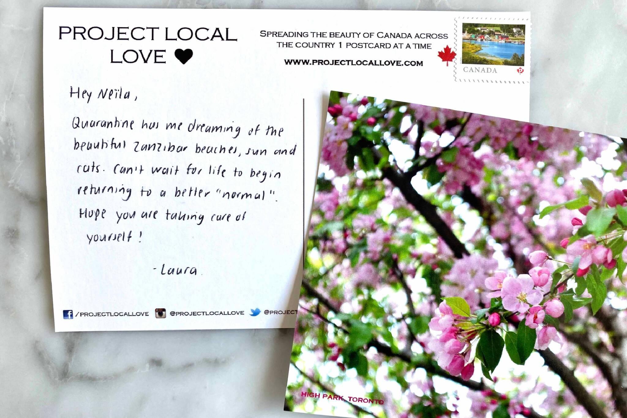 project local love