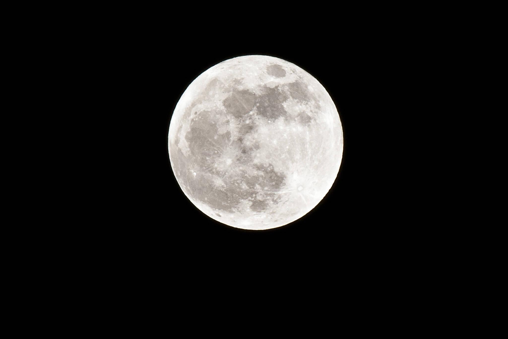 moon bts