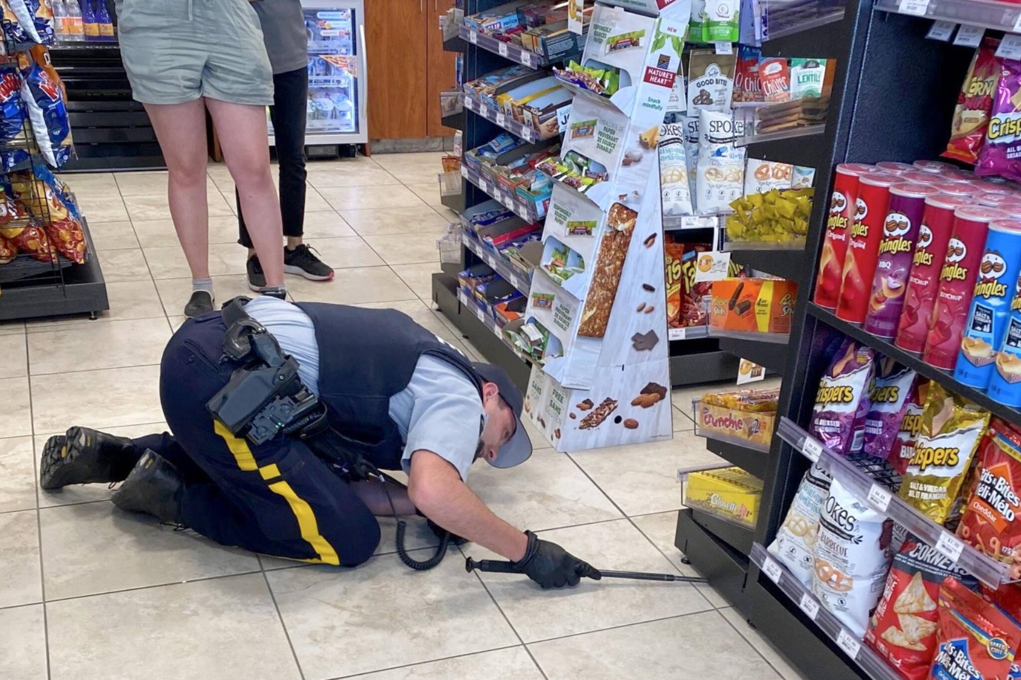 snake gas station alberta police