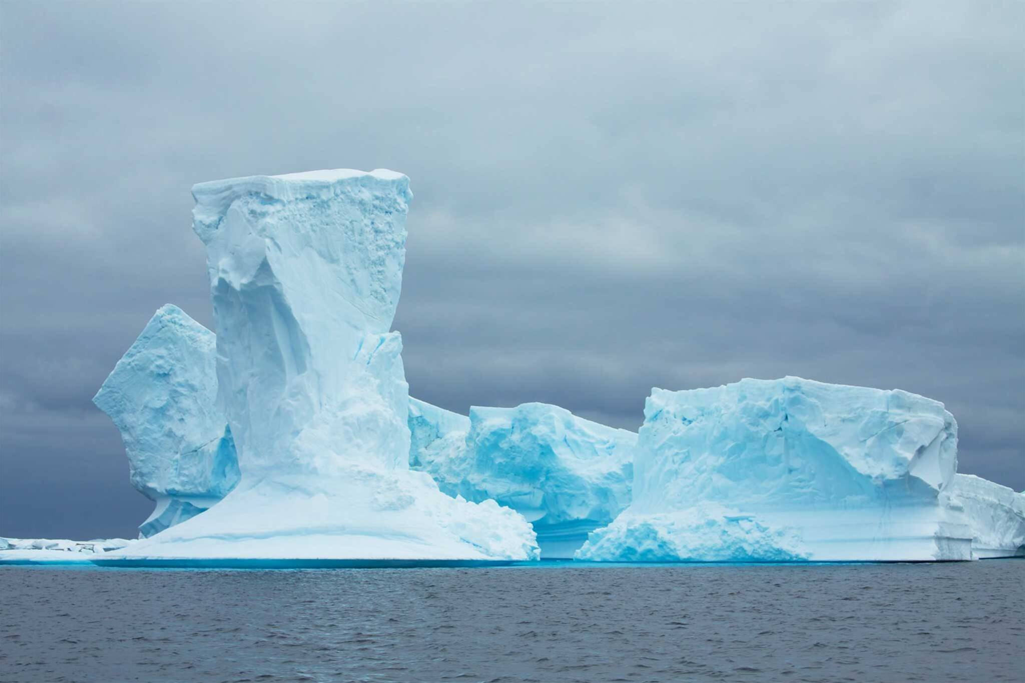 Iceberg Alley Newfoundland