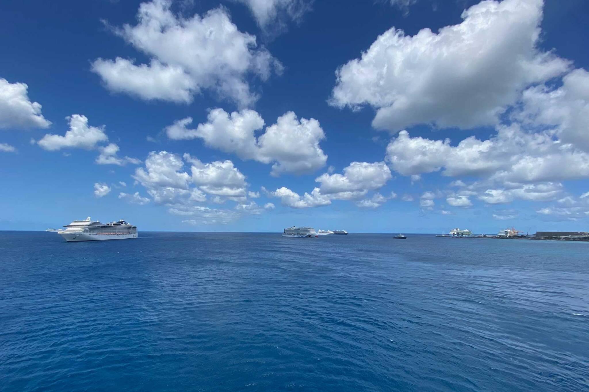 cruise ship covid 19